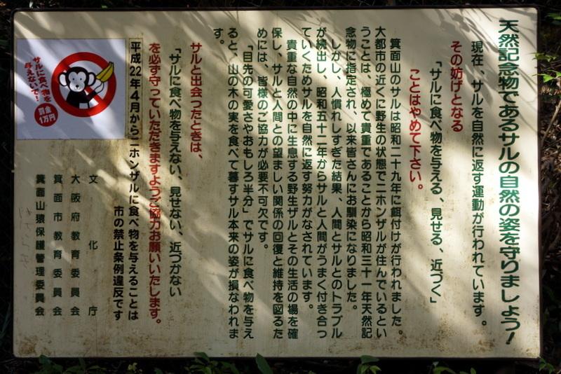 箕面大滝 (19).JPG