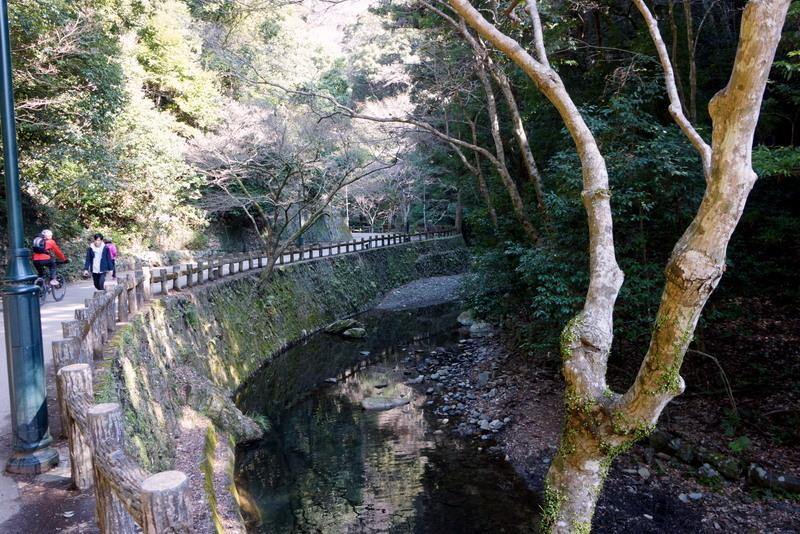 箕面大滝2 (4).JPG