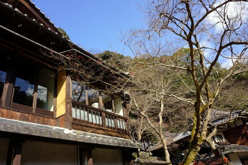 箕面大滝6 (2).JPG