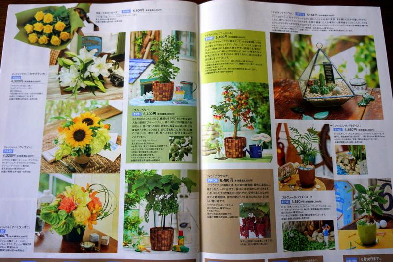 日比谷花壇母の日ギフト父の日ギフトカタログ (10)