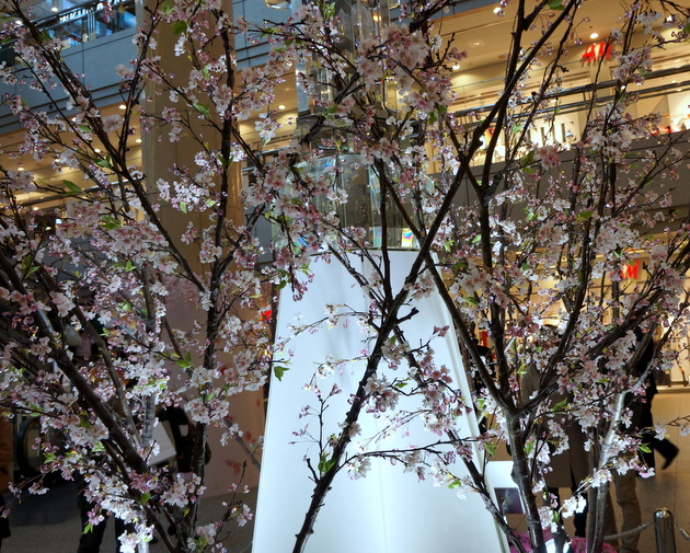 クリスタル桜007