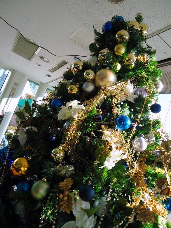 順天堂医院クリスマスツリー (2).JPG